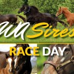 WA Sires Race Day